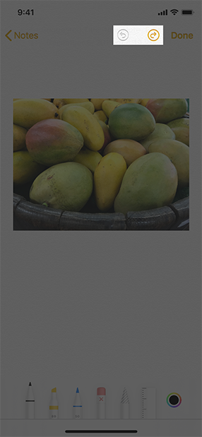 Image of an iPhone screen showing a note that contains a photo of some mangoes and the tool picker at the bottom of the screen, below the photo. The screen is highlighted to show the undo and redo buttons in the navigation bar.