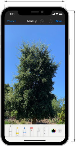 Image of an iPhone screen that displays a photo of a tall tree. The tool picker at the bottom edge obscures the foreground of the photo, including most of the tree's trunk. Below the image, an X indicates the layout is not recommended.
