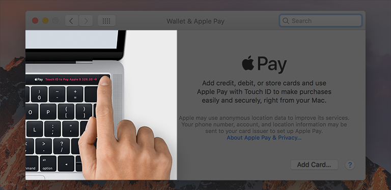 Screenshot of the Wallet & Apple Pay preferences pane, showing an image within the pane.