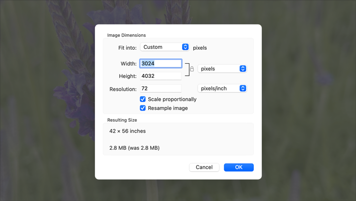 Partial screenshot cropped to show the Preview app's Adjust Size sheet centered on top of the dimmed image of purple flowers.