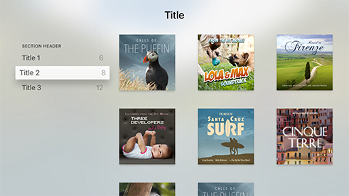 Catalog Template on Apple TV