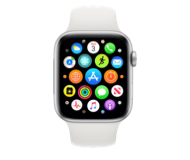 watchOS 7.2 beta 2 (18S5555c)