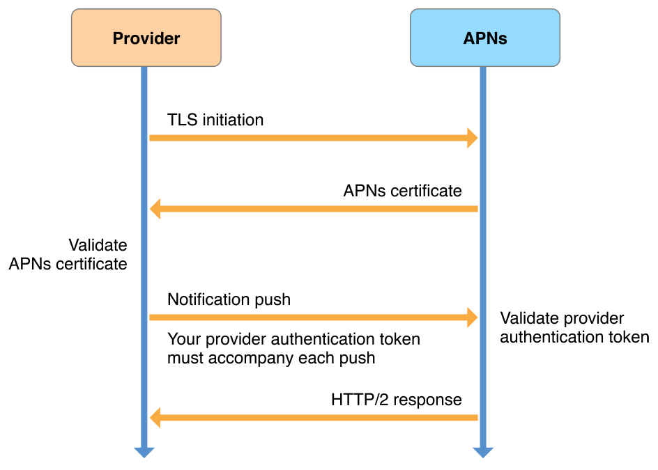 Provider-to-service connection trust