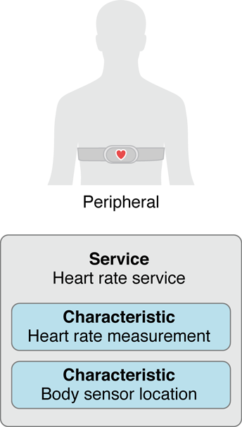 A peripheral's service and characteristics