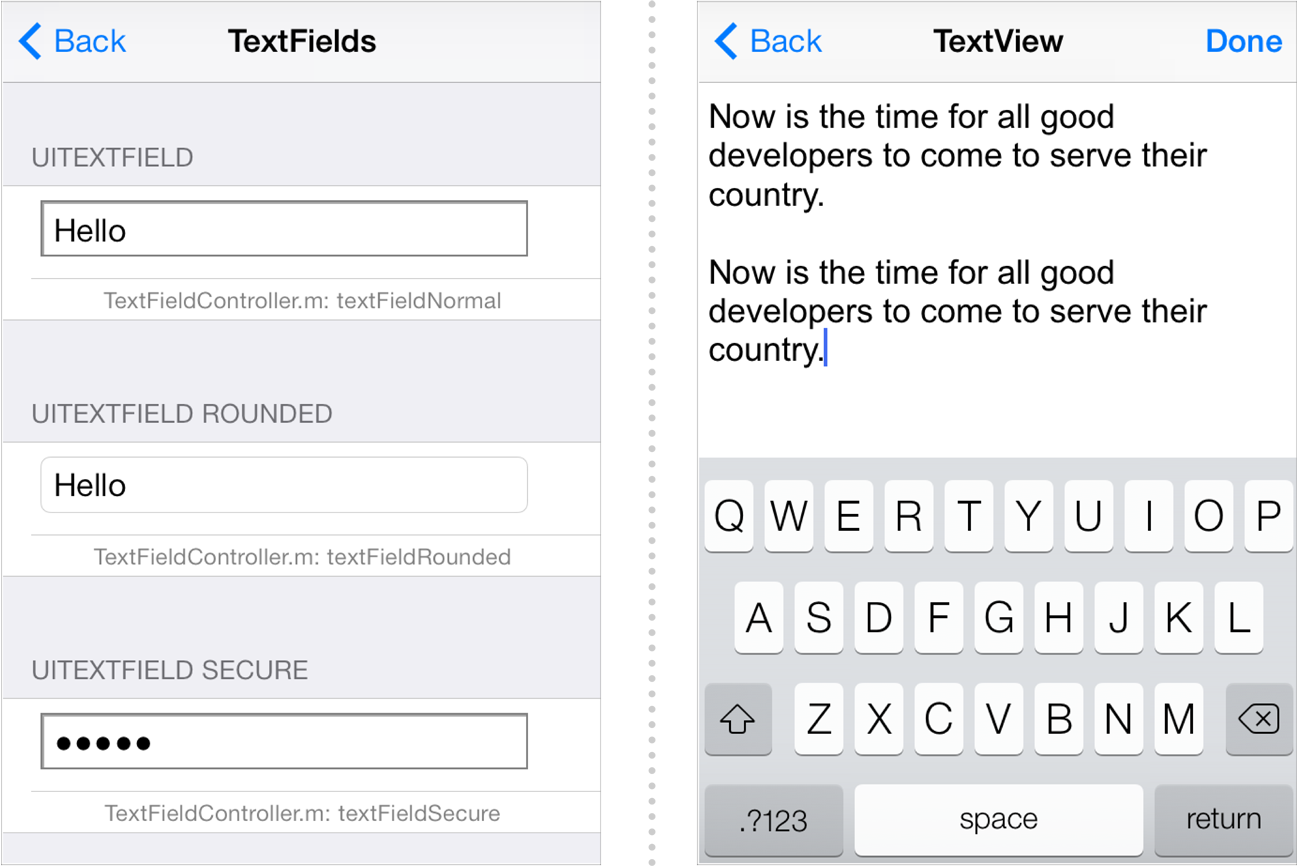 Displaying Text Content in iOS